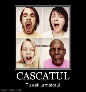 874_cascatul